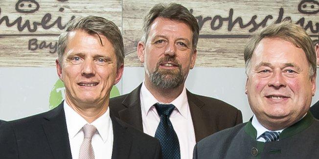 """Aktion """"Stroh-Schwein"""" startet in Erlangen"""