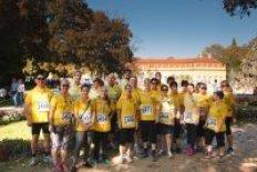 Das Studentenwerk beim Lauf gegen Krebs 2018