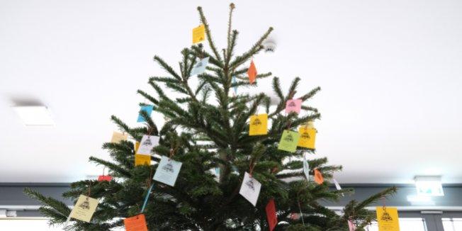 Geschenke-Baum-Aktion im Advent
