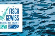 MSC-Woche in Erlangen